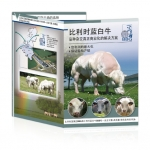 Belgian Blue Group - leaflet international version Chinoise